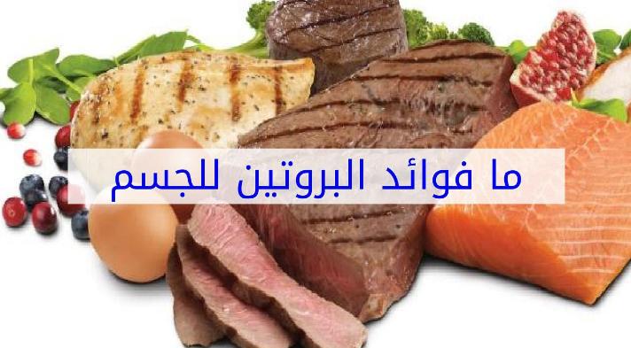 فوائد البروتين للجسم