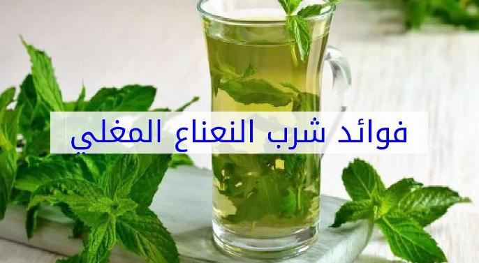 Photo of فوائد شرب النعناع المغلي