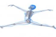 كيفية تقوية العظام